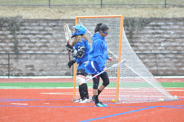 MHCA Lax v. AHA 28March15